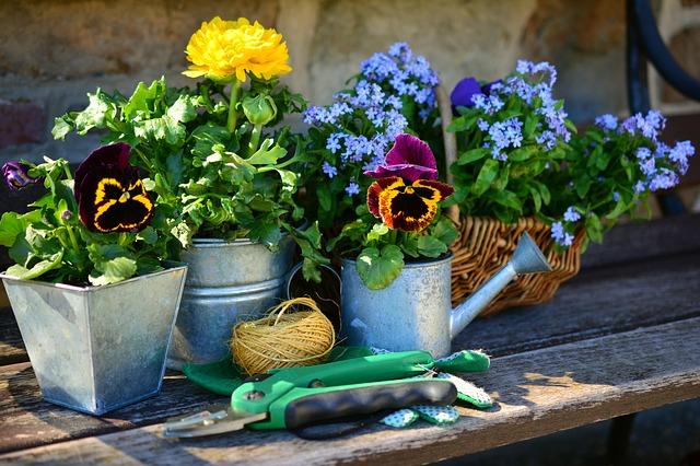 Gartenarbeit im Freibad